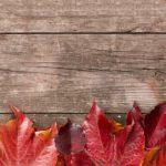 【秋のスキンケア対策】乾燥する冬を乗り越えるための対策とおすすめメンズスキンケア5選紹介!